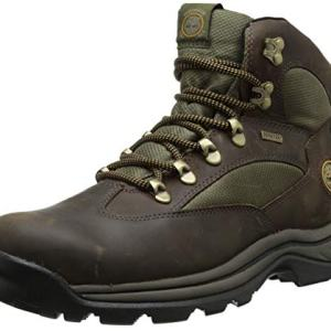 Timberland Men's Chocorua Trail Mid Waterproof Snow Shoe, Brown/Green