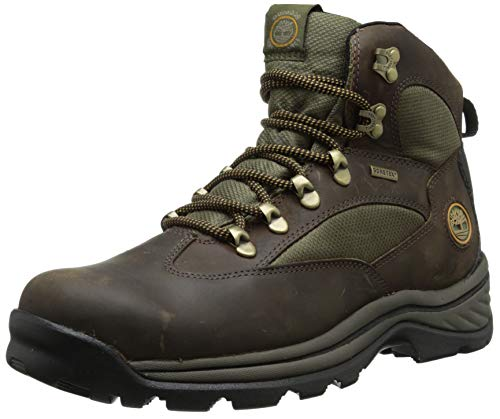 Timberland Men's Chocorua Trail Mid Waterproof Snow Shoe