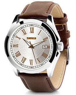 Aposon Men's Classic Quartz Wrist Watch,Roman Numeral Business Watch Casual
