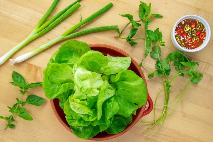 Lettuce and Nuoc Cham