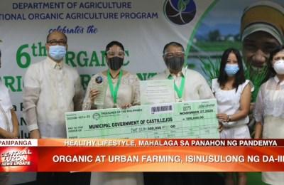 Organic at urban farming, isinusulong ng Department of Agriculture Region 3   News