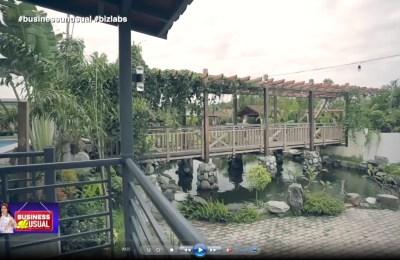 Nuan Farm and Resort – Hidden Gem at Bacolor, Pampanga   Business Unusual