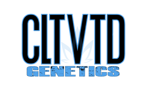 CLTVTD genetics_TRANSPARENT