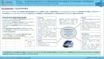 MSOST-1-1-FE1b-Procédures-et-Protocoles