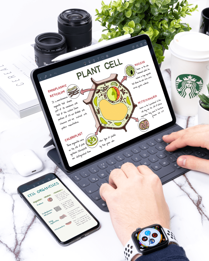 Online learning with noteshelf