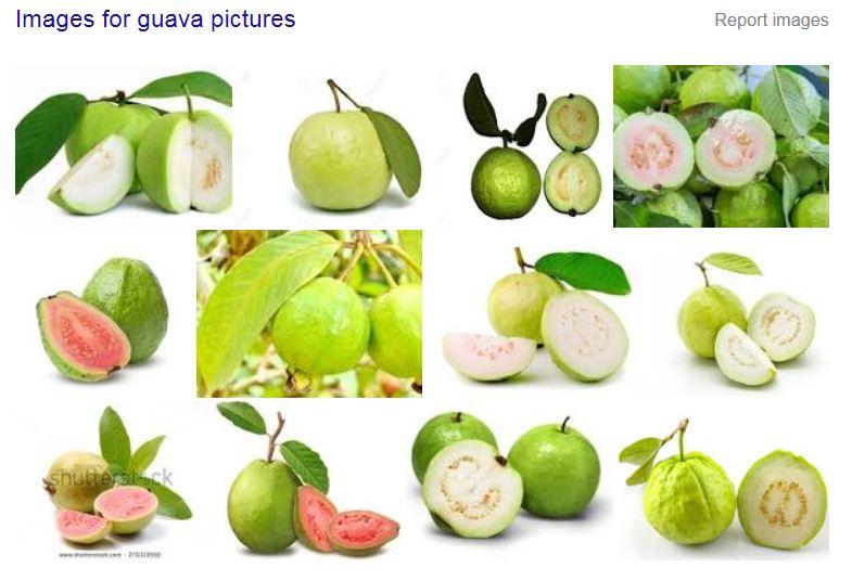 guava pic