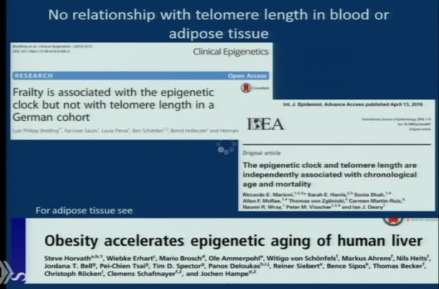 aging-genes-3