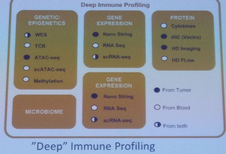 deep immune profiling