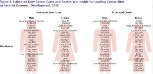 world cancer