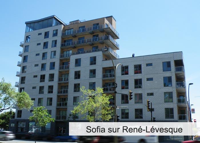 Sofia sur René-Lévesque Condos Appartements