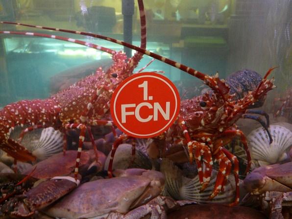 FCN-Krebse