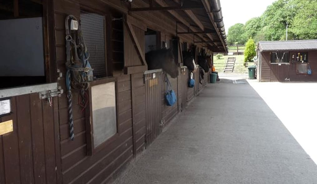 Buy a Horse Riding School