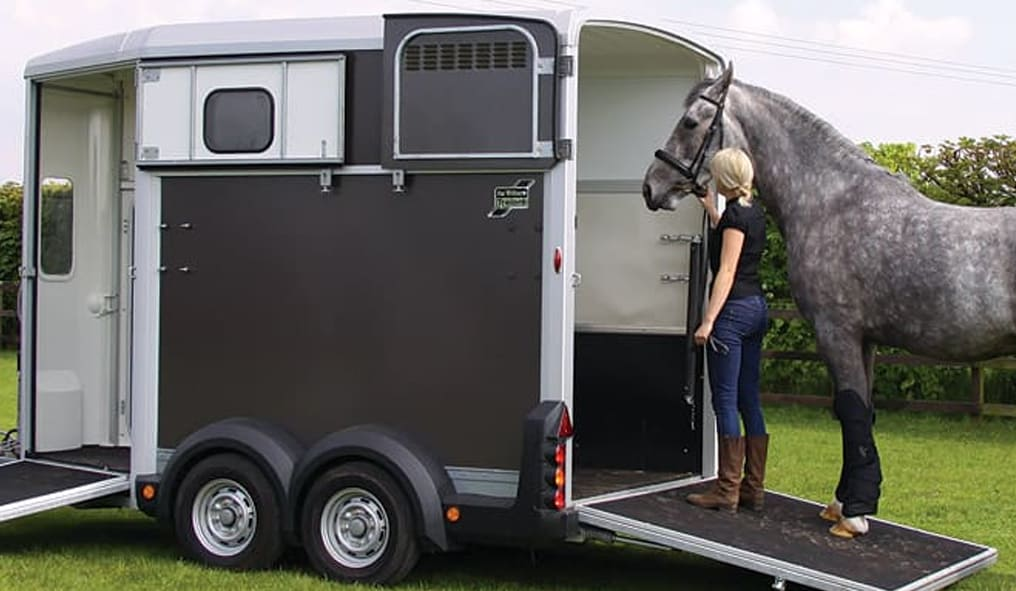 How to pick up the horse on the van
