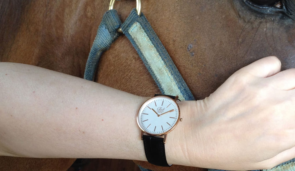 for your holidays Thoroughbred watch