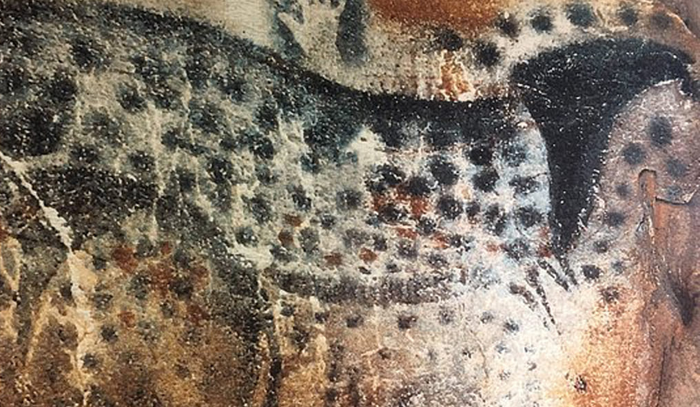 cave paintings are found in Lescaux and Peche Merle