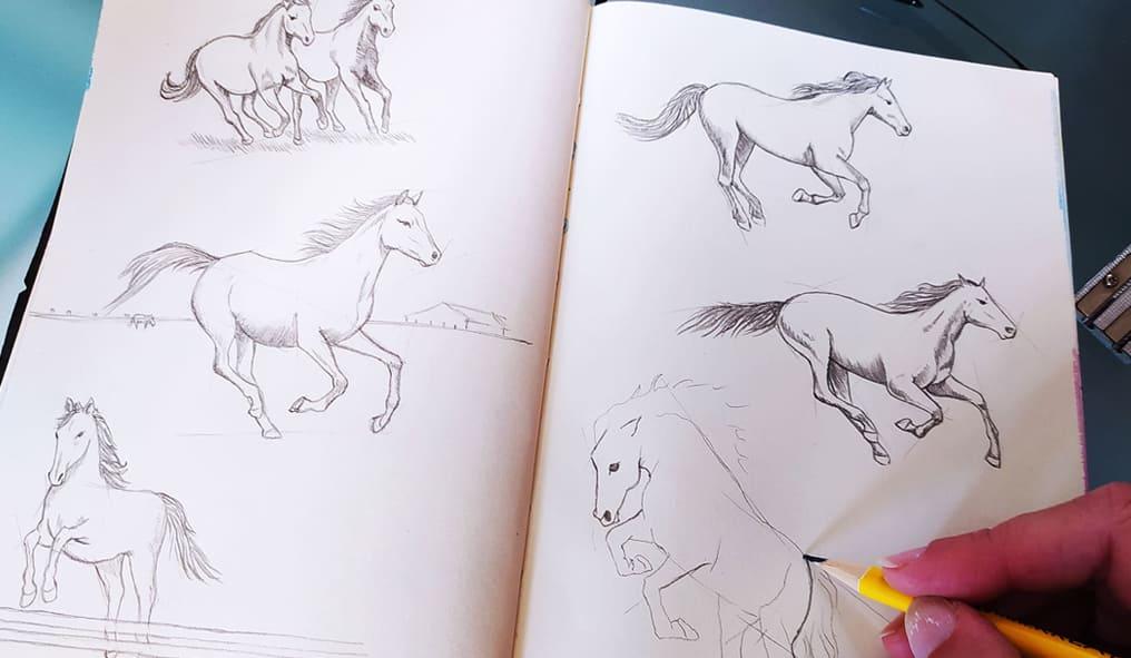 Cavalli pirografati i disegni