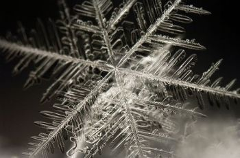 hópehely snowflake, por bkaree1