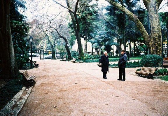 Proceso cruzado: parque