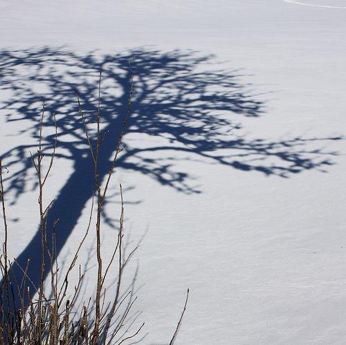 17 a mere shadow....., por jenny downing