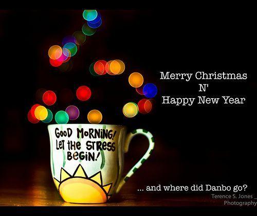 Merry Christmas 2010... and where did Danbo go? [195/365], por Terence S. Jones