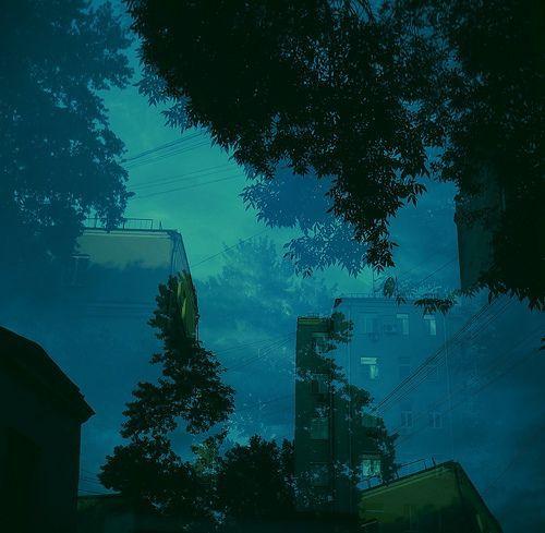 Sky Trees, por max_trudo