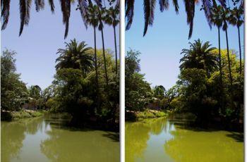 Resaltar los colores de una imagen_antes y despues