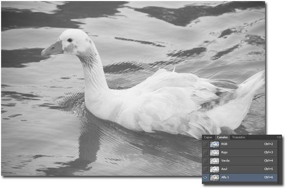 Manera no destructiva de enfocar en Photoshop_03_