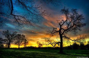 McIntire Park sunrise, por Small_Realm