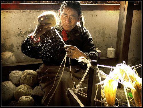 Wool, por Sukanto Debnath