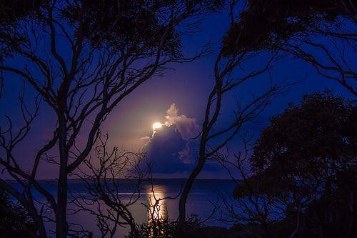 Full Moon, por Jacqui Barker