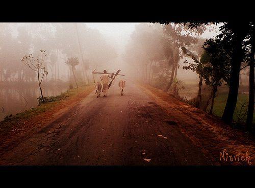 hope for life, por Afzalul karim Nirvick