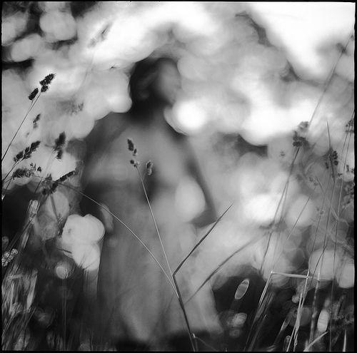 Spring Grass, por vonSchnauzer