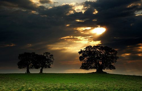 Cloud break, por Vince Alongi