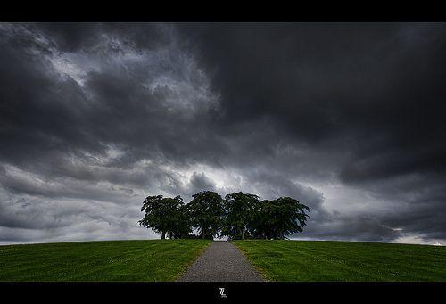 The Pathway..., por Tobias Lindman