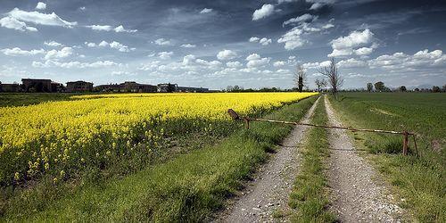 I campi di Aprile, por Giovanni Orlando