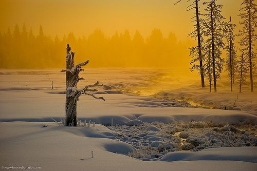 Best of Yellowstone, Day 4 Midway Geyser Basin, por Howard Ignatius