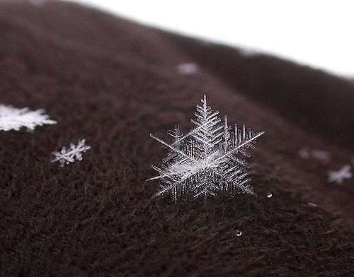 Snowflake on my jacket, por AlexRK