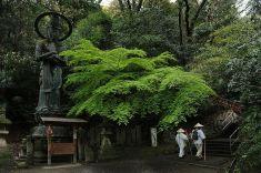 Imagen jap007
