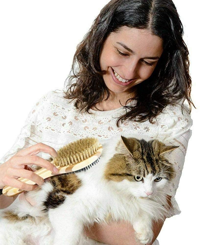 ¿Existe un remedio natural para las bolas de pelo de los gatos?
