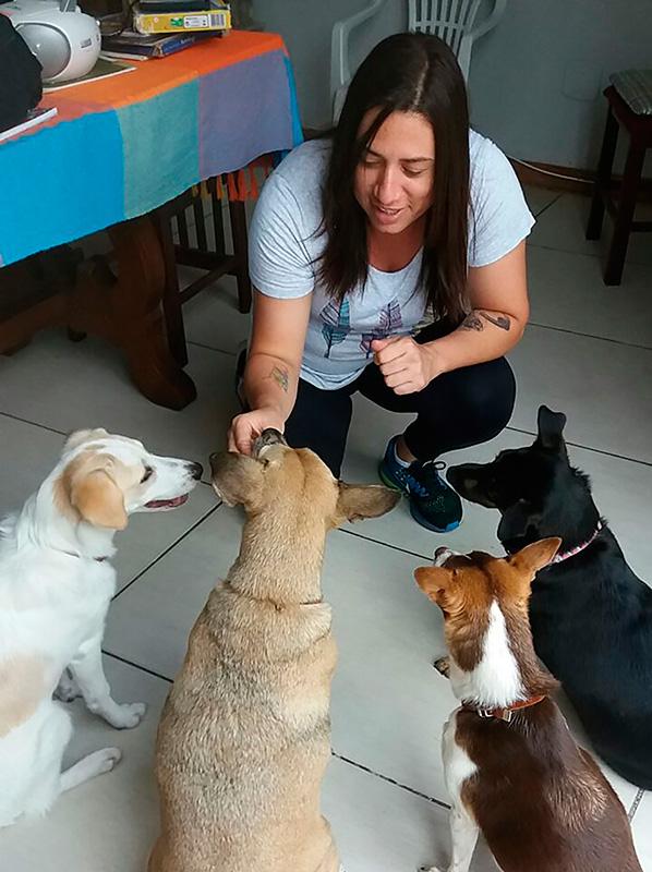 adestramento em domicilio