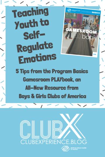 Self-regulation pin.png