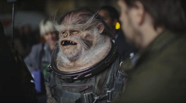 ro-creatures-spacemonkey