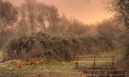 """Concurso de fotografía """"Se acerca el invierno"""""""