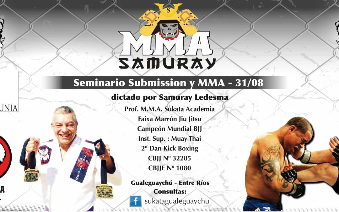 Jiu Jitsu: Seminario de Artes Marciales Mixtas (MMA)