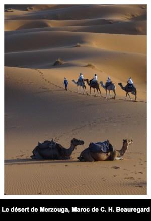 k081- Dunes du Merzouga 0297b