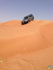 Złote pustynne piaski