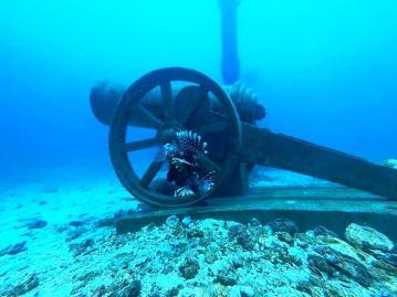 Diving Trincolmee Sri Lanka International Dive School .jpg (1)
