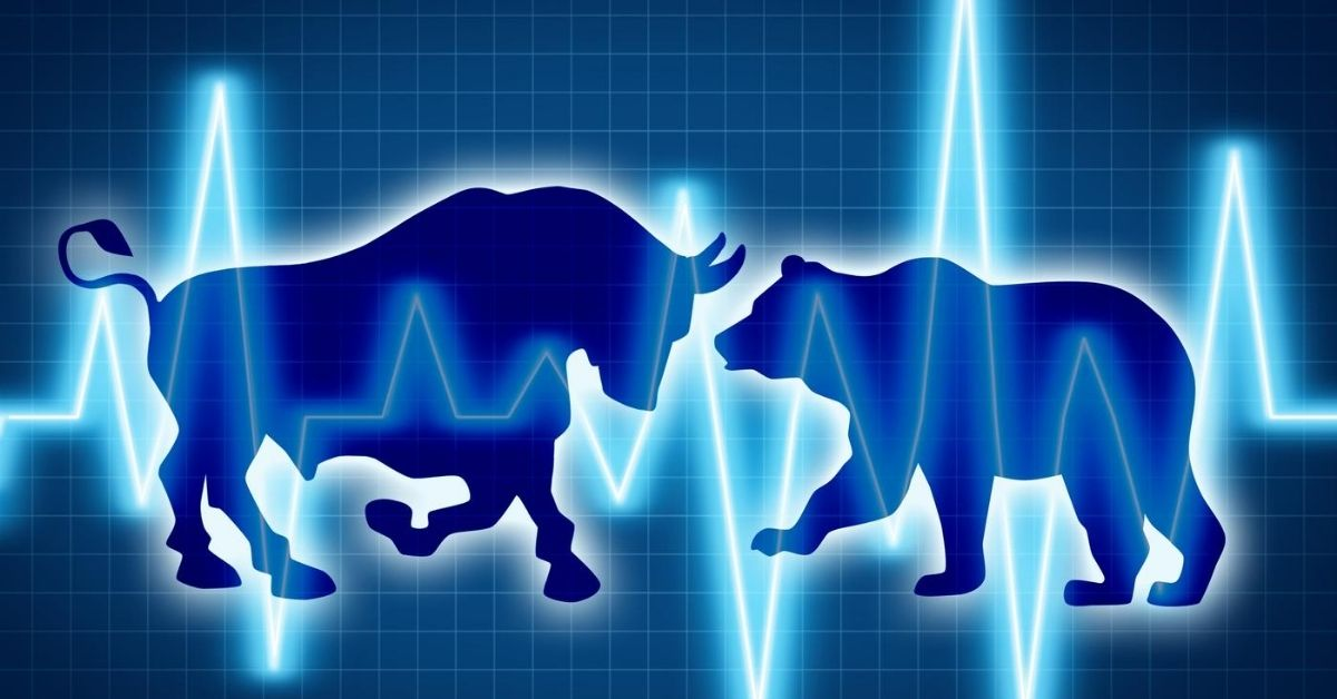 Surviving a Bear Market Encounter in the Wild - graphic drawing of bear and bull head to head with stock market trend overlaid
