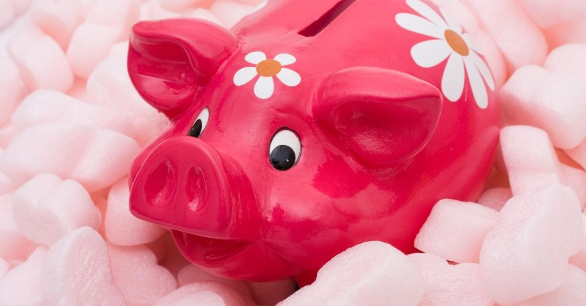 Protecting Your Income from Death and Disability - picture of pink piggy bank surrounded by packing foam pieces