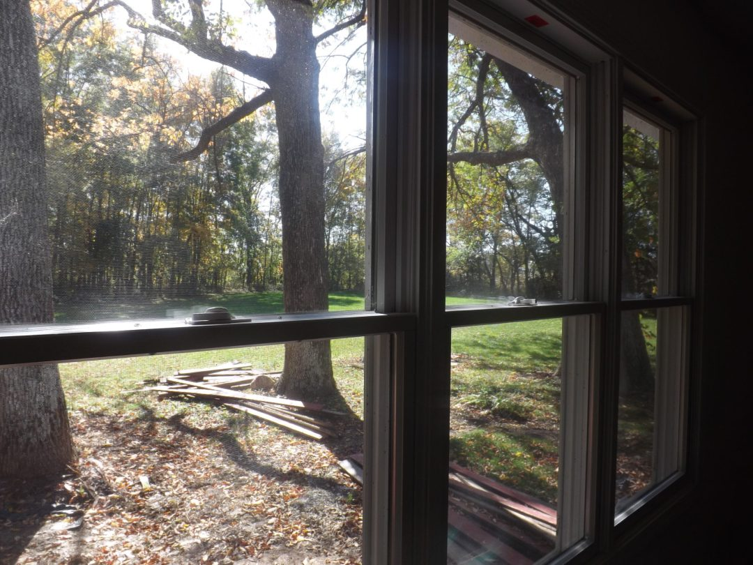 View out the Back Window.....so Peaceful.....